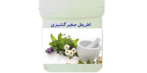 اطریفل صغیرگشنیزی در طب سنتی ایران