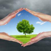 پیشگیری از عوارض آلودگی هوا