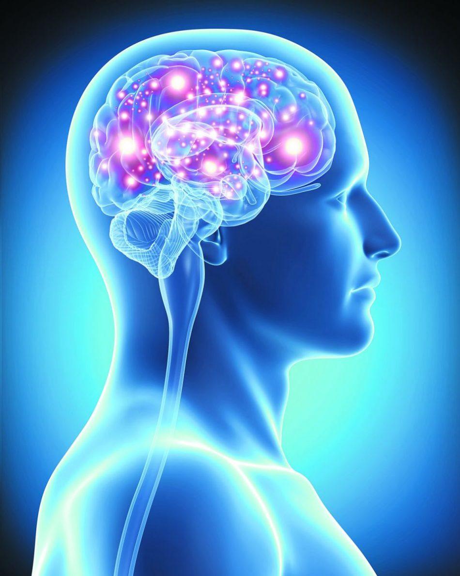علائم فراموشی در اثر بیماری آلزایمر