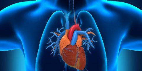 آریتمی قلب ، انواع ، تشخیص و درمان