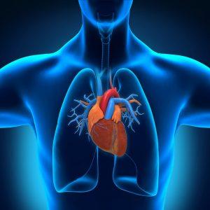 علت بروز تپش قلب و درمان