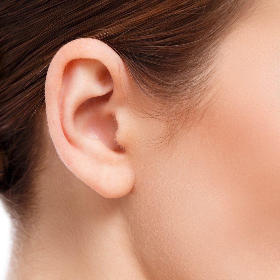 closeup of woman ear