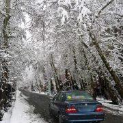چگونه از سر خوردن خودرو روی برف و یخ جلوگیری کنیم و هنگام سر خوردن چه کنیم؟
